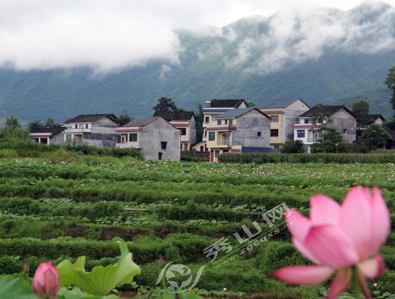 刘家官庄镇地图